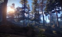 Rust forest